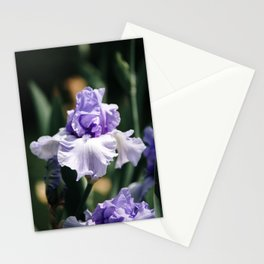 Lavender Iris Stationery Cards