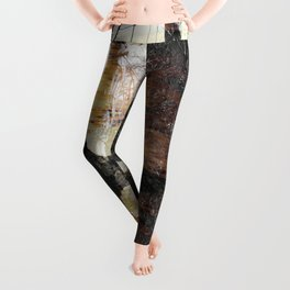 The trees that guard the crows. Leggings