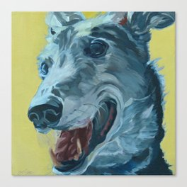 Dilly the Greyhound Portrait Canvas Print