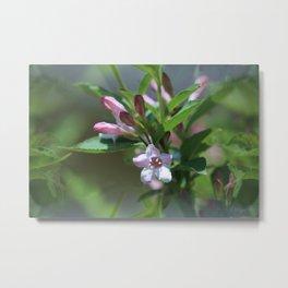 Pink Fairy Flowers Metal Print