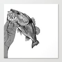 bass Canvas Prints featuring Bass  by KylePage