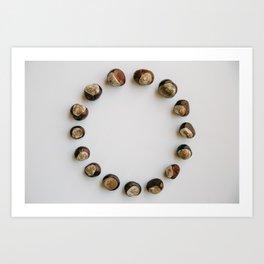 Chestnut Collection Circle Photograph Art Print