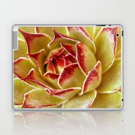 Suculenta Laptop & iPad Skin