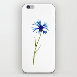 Simple Cornflower iPhone Skin