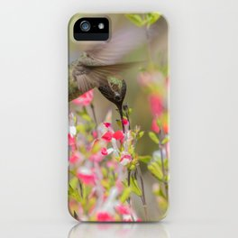 Anna's Hummingbird in Hot Lips iPhone Case