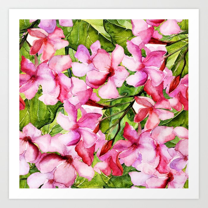 Aloha my tropical pink oleander flower garden art print by aloha my tropical pink oleander flower garden art print mightylinksfo