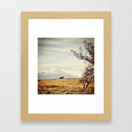 The Majestic Framed Art Print