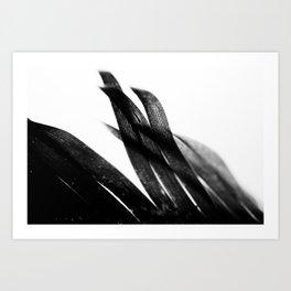 Curve and Wish Art Print
