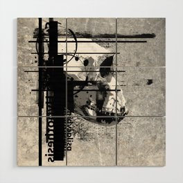 Evolution of Cognition Wood Wall Art