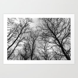 Flying tree branches, black and white Art Print