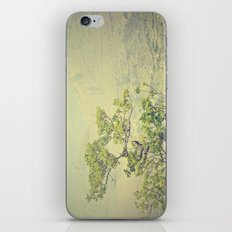 Caribbean Bonsai iPhone & iPod Skin