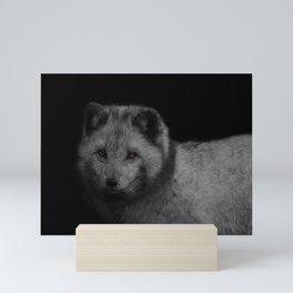 Arctic Fox Mini Art Print