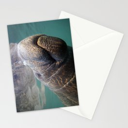 I Heart Manatees Stationery Cards