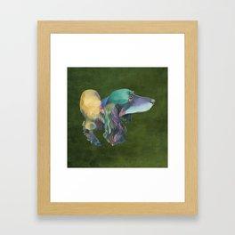 Longhaired Dachshund Framed Art Print