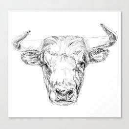 Bull illustration Canvas Print