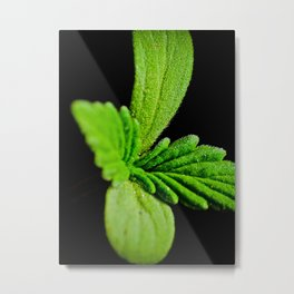 LEGALIZE IT Metal Print