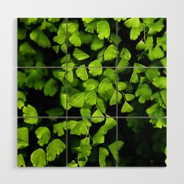 Maidenhair Ferns Wood Wall Art