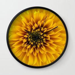 Yellow flower in sunshine Wall Clock