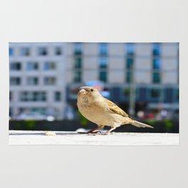 City Bird Lovely Sparrow Rug