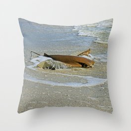 Stingray on Boca Grande II Throw Pillow