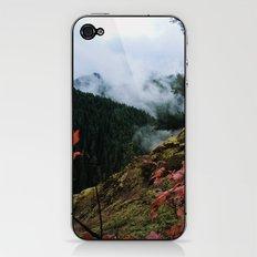 Salmon-Huckleberry Wilderness iPhone & iPod Skin