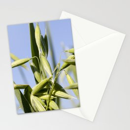 beautiful young ear of oat Stationery Cards