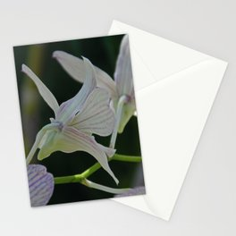 Simply Magic Stationery Cards