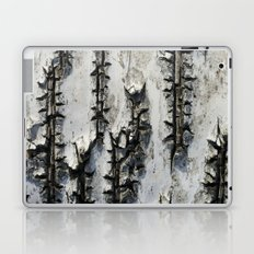 Birch Bark Laptop & iPad Skin