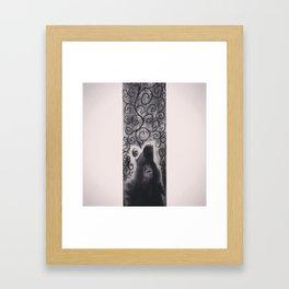 wolf howl Framed Art Print