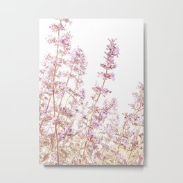 Soft Pink Wild Summer Flowers Metal Print