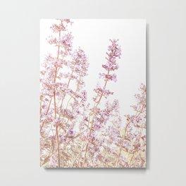 Soft Pink Wild Summer Flowers Metal Print