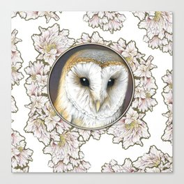 Barn owl small Canvas Print