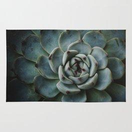 succulent plant Rug