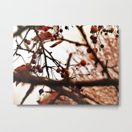 Berry Farm Metal Print
