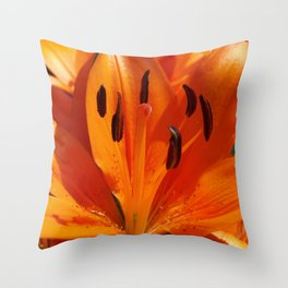 Tangerine Dreams Throw Pillow