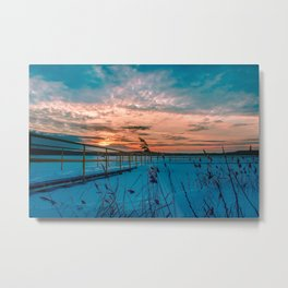 Waiting for the Summer Metal Print