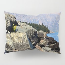 The Remarkables Pillow Sham