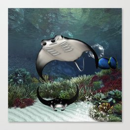 Awesome manta Canvas Print