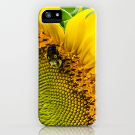 1493 - Sunflower Bumble iPhone Case