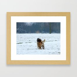 Dogs playing in the snow Framed Art Print