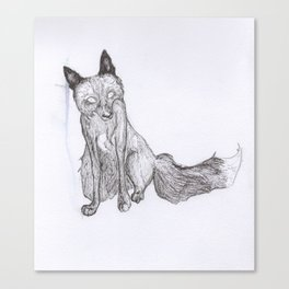 Shadow Fox Canvas Print