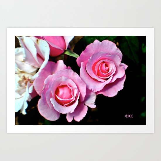 Duo Florum Art Print