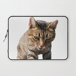 Tabby Looking Down Background Removed Laptop Sleeve