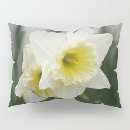 White and yellow daffodils, early spring flowers Pillow Sham
