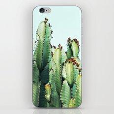 Cactus Love #society6 #decor #buyart iPhone & iPod Skin