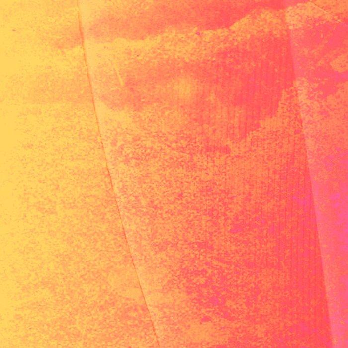Taste Of Summer 1 Leggings