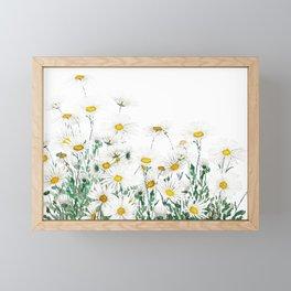 white margaret daisy horizontal watercolor painting Framed Mini Art Print