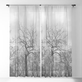 Coven of trees Sheer Curtain