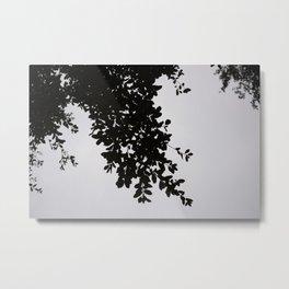 Overcast Metal Print