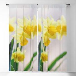 Daffodil Season Blackout Curtain